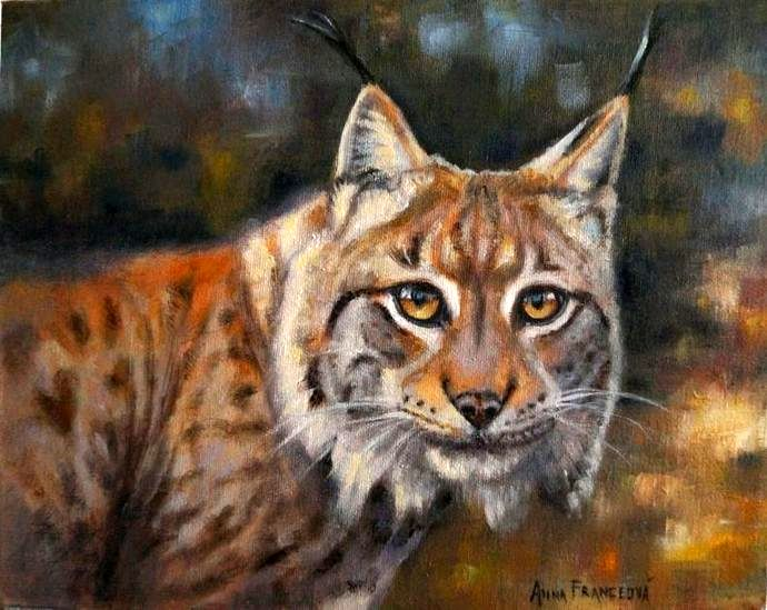 Our treasures - Lynx